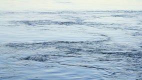 Opinión Neva River en St Petersburg almacen de video