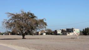 opinión ordinaria de Oriente Medio en Bahrein almacen de metraje de vídeo