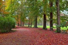 Opinión otoñal del parque de Racconigi Foto de archivo libre de regalías