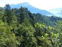 Opinión panorámica de Alpes Foto de archivo