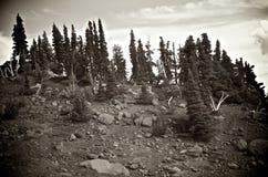 Opinión panorámica de Alpes Imagen de archivo