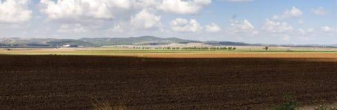 Opinión panorámica del valle de Jezreel Fotografía de archivo