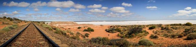 Opinión panorámica sobre el ciervo del lago de sal cerca de la vía, Woomera, sur de Australia, Australia foto de archivo