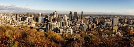 Opinión panorámica sobre Toronto céntrico imágenes de archivo libres de regalías
