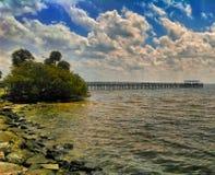 Opinión Pier At Safety Harbor Marina fotografía de archivo