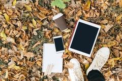 Opinión plana de la endecha de las hojas de otoño, de la tableta, del teléfono y de la taza de papel de coffe Desde arriba con de Fotografía de archivo