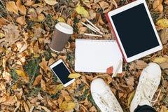 Opinión plana de la endecha de las hojas de otoño, de la tableta, del teléfono y de la taza de papel de coffe Desde arriba con de Fotos de archivo libres de regalías