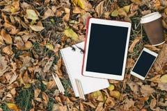 Opinión plana de la endecha de las hojas de otoño, de la tableta, del teléfono y de la taza de papel de coffe Desde arriba con de Foto de archivo libre de regalías