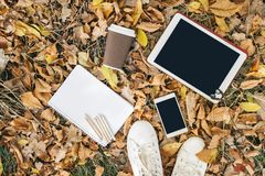 Opinión plana de la endecha de las hojas de otoño, de la tableta, del teléfono y de la taza de papel de coffe Desde arriba con de Foto de archivo
