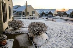 Opinión que ajardina de la nieve Foto de archivo libre de regalías