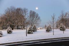 Opinión que ajardina de la nieve Imagen de archivo libre de regalías