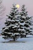 Opinión que ajardina de la nieve Imagen de archivo