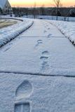 Opinión que ajardina de la nieve, algunos pasos Fotos de archivo libres de regalías
