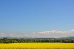 Opinión rural del campo Imagen de archivo