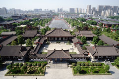 Opinión salvaje grande de la ciudad de la pagoda del ganso Fotografía de archivo libre de regalías