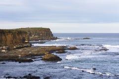 Opinión sobre bahía del objeto curioso, el punto más situado más al sur del Catlins, Nueva Zelanda fotografía de archivo libre de regalías