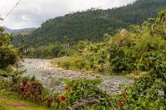 Opinión sobre el alejandro de Humboldt del parque nacional con el río Cuba fotos de archivo libres de regalías
