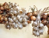 Opinión sobre el bio ajo y cebollas Foto de archivo