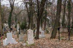 Opinión sobre el cementerio viejo y oscuro Foto de archivo
