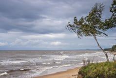 Opinión sobre el mar Báltico tempestuoso, Vidzeme, Letonia Fotos de archivo libres de regalías