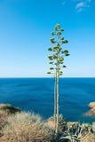 Opinión sobre el Mar Egeo foto de archivo libre de regalías