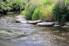 Opinión sobre el río Semois, belga Ardenas Fotografía de archivo libre de regalías