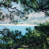 Opinión sobre la bahía de Adrasan a través de árboles de pino Mar azul Foto de archivo