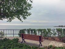 Opinión sobre la bahía georgiana del banco de madera debajo del árbol de abedul en el parque del punto de la puesta del sol en Co Fotos de archivo libres de regalías