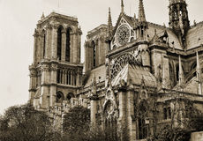 Opinión sobre la cara de Notre Dame en sepia imagenes de archivo