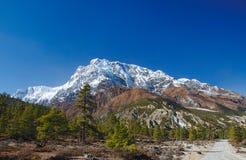 Opinión sobre la montaña de Annapurna de Nepal Imagenes de archivo