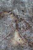 Opinión sobre la red en el asfalto Imagen de archivo libre de regalías