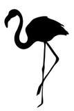 Opinión sobre la silueta de un flamenco stock de ilustración