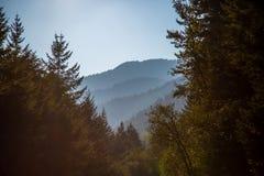 Opinión sobre las colinas distantes del trailhead de Opal Pool fotografía de archivo libre de regalías