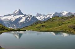 Opinión sobre las montan@as suizas Imagen de archivo