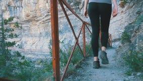 Opinión sobre los pies de la mujer del viajero que caminan caminar en la trayectoria del rastro en Stone Mountain La cámara sigue almacen de video
