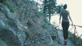 Opinión sobre los pies de la mujer del viajero que caminan caminar en la trayectoria del rastro en Stone Mountain La cámara sigue almacen de metraje de vídeo