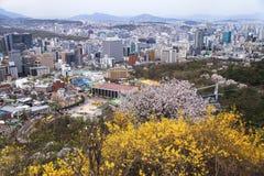 Opinión sobre Seul, Corea Foto de archivo libre de regalías