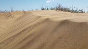 Opinión sobre superficie de las dunas de arena almacen de video