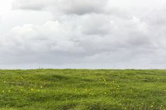 Opinión sobre un paisaje holandés con un campo o un prado vacío con la hierba verde fresca y un cielo gris cubierto imagenes de archivo