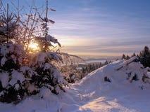 Opinión sobre un winterland fotos de archivo libres de regalías