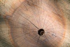 Opinión superior de la textura de madera agrietada del tocón con el agujero Fotos de archivo