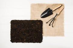 Opinión superior de las herramientas que cultivan un huerto sobre el fondo de madera blanco de los tablones Fotografía de archivo