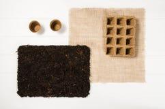 Opinión superior de las herramientas que cultivan un huerto sobre el fondo de madera blanco de los tablones Imagen de archivo libre de regalías
