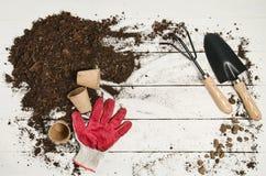 Opinión superior de las herramientas que cultivan un huerto sobre el fondo de madera blanco de los tablones Imagen de archivo