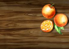 Opinión superior de las naranjas frescas sobre la frontera Cartel natural del alimento biológico Fondo drenado mano de la acuarel fotos de archivo