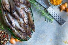 Opinión superior de los pescados frescos Hierba y verduras picantes pescados y especias en una tabla del metal El cocinar sano de fotografía de archivo