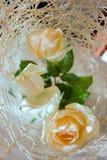 Opinión superior de tres rosas blancas Fotos de archivo