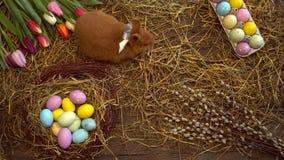 Opinión superior del conejo de pascua de la celebración del concepto tradicional mullido del símbolo que se mueve alrededor metrajes