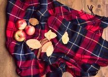 Opinión superior del fondo del canela de Apple del otoño del otoño del concepto combinado de lana de madera de la forma de vida Imagenes de archivo