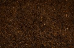 Opinión superior del jardín del suelo del fondo fértil de la textura Imagenes de archivo
